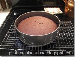 Baked larger cake