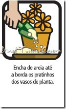 vaso plantas