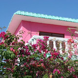 Pink House with Pink Roses