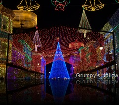 Osborne Lights 2