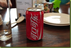 China_20091124_1078_Day06