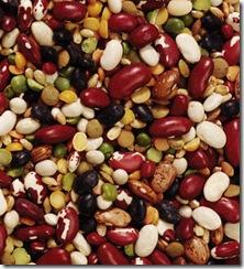diet superfoods navy bean