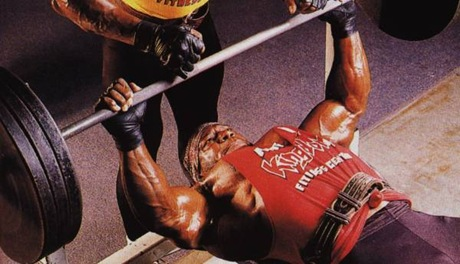 lee haney bench chest training