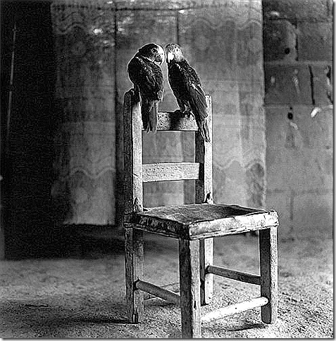 House of the Speaking Parrots — Horst Friedrichs, undated
