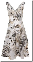 linea prom dress