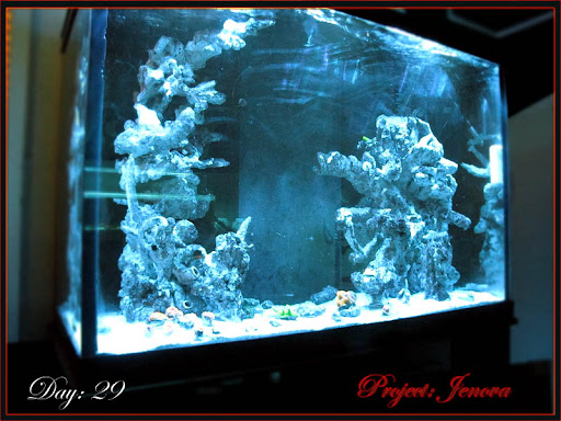 Project: Jenova... a Psychopath's LED Powered Tech 70g Dream......  - Page 4 8192