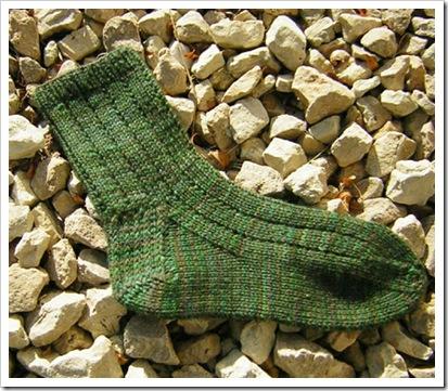 Thuja_socks