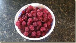 raspberries 005