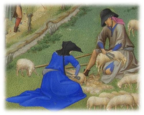 Usi costumi del medioevo la lana - La pagina della colorazione delle pecore smarrite ...