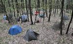 naše lesní spaní