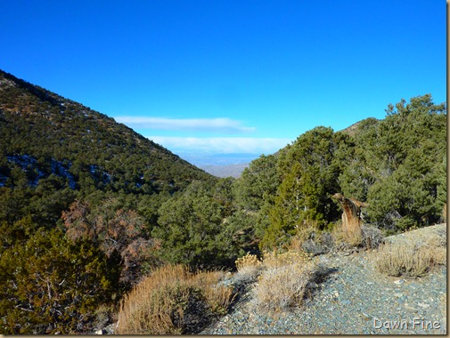 wildrose hike and charcoal kilns_013