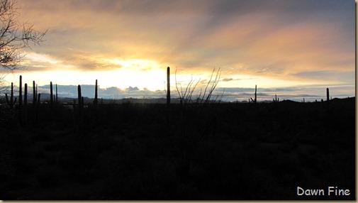 rainbow desert_046
