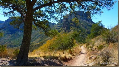 Lost Mine Trail_080
