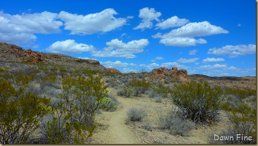 Big Bend Ranch State park_046