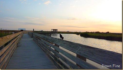 Padre Island Mercedes Texas