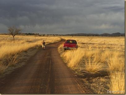 grasslandsnite (5)