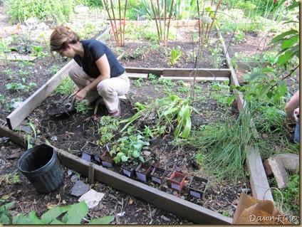 sams garden_20090528_008