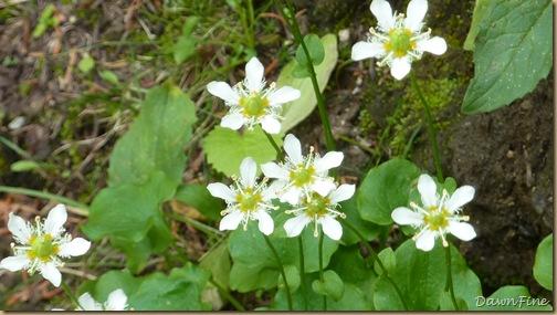 pine creek lakes hike_20090829_158