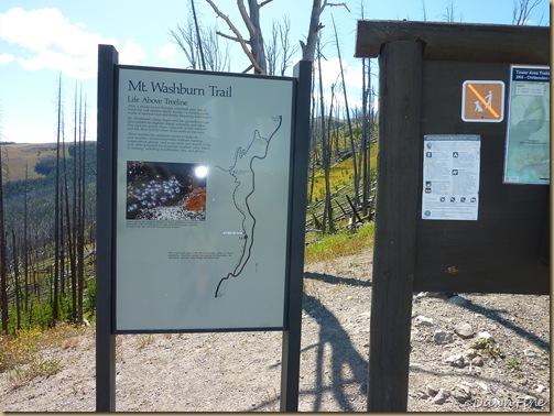 mt washburn hike_20090902_055