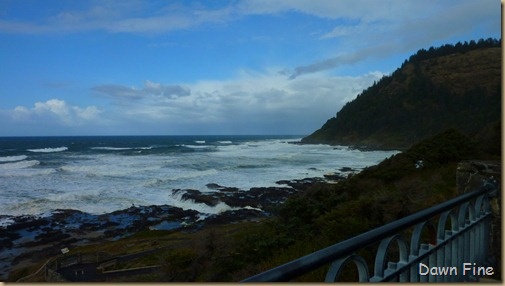 oregon coast drive_019