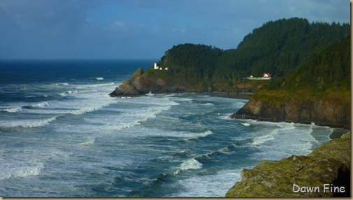 oregon coast drive_038