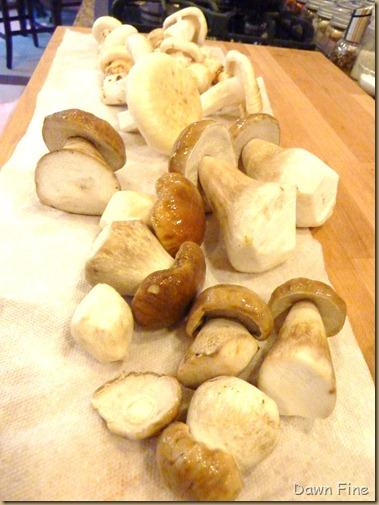 mushroom foray_031