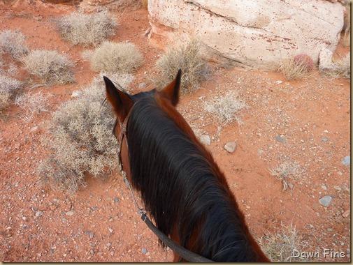 horseback riding with merrilee_001