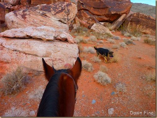 horseback riding with merrilee_004