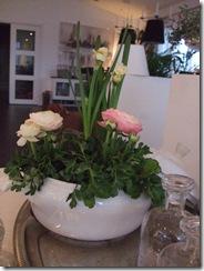 marsbilder blommor 021