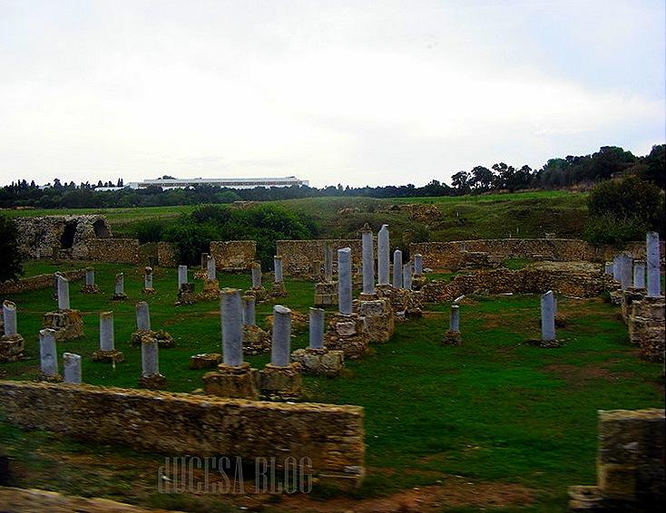 TUNISIA 2009 111