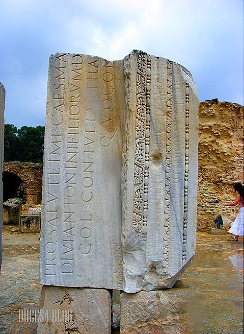 TUNISIA 2009 170