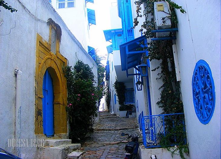 TUNISIA 2009 127