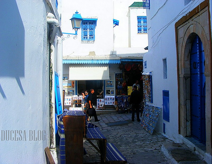 TUNISIA 2009 154