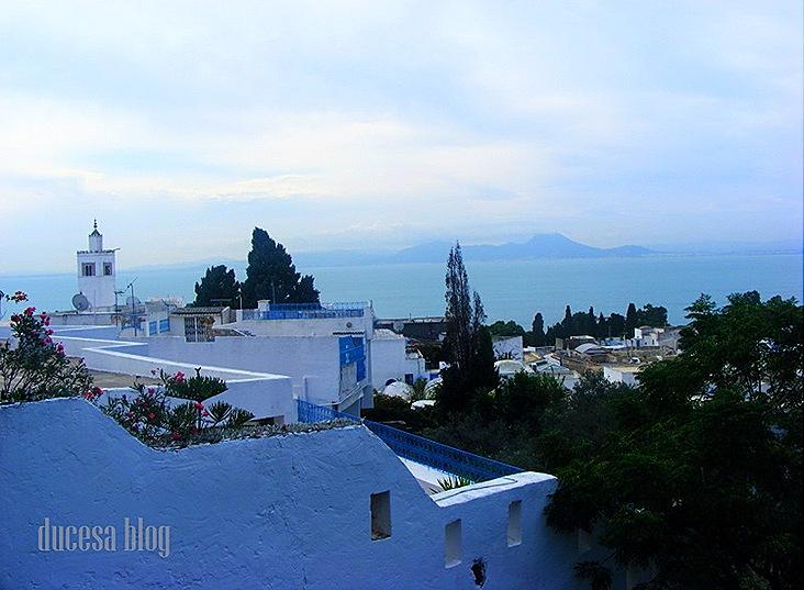 TUNISIA 2009 129