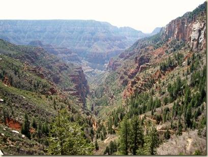 14 North Kaibab Trail Roaring Springs Canyon GRCA AZ (800x600)