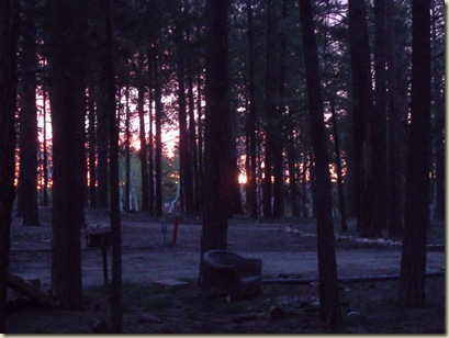 01 Sunrise thru trees NR GRCA NP AZ (1024x768)