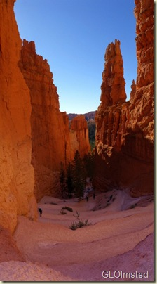 06 Switchbacks between fins & hoodoos on Navajo Loop trail Bryce Canyon NP UT pano (565x1024)