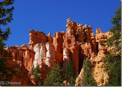 12 Hoodoos above Navajo Loop trail Bryce Canyon NP UT (1024x729)