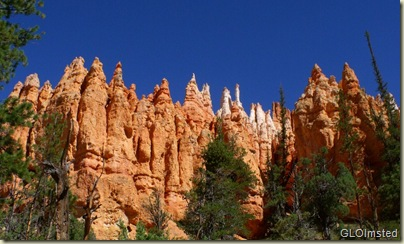 14 Hoodoos from Navajo Loop trail Bryce Canyon NP UT (1024x614)