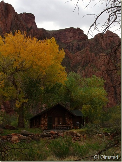 10 Ranger residence under fall trees and canyon walls GRCA NP AZ (600x800)