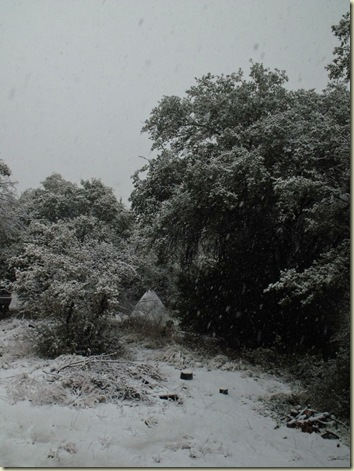02 Snowing Yarnell AZ (768x1024)