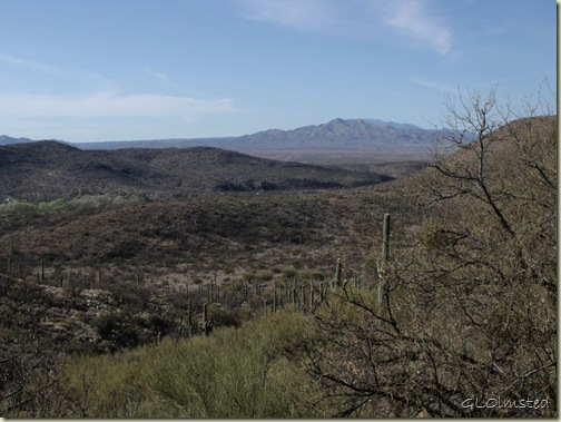 View into valley where camp is from Visitor Center Colossal Cave Mountain Park Vail Arizona