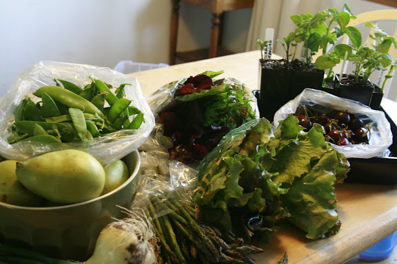 An example of a CSA Box