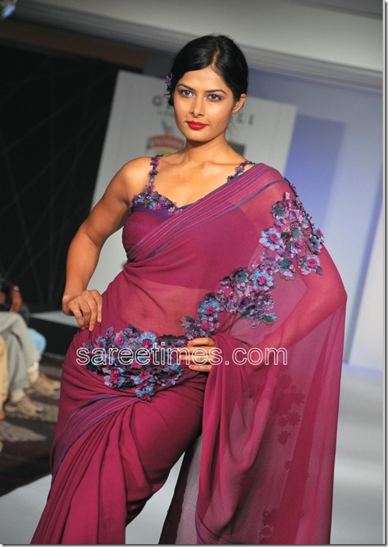 CIFW-2010-Sarees