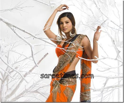 Gauhar-khan-Orange-Designer-Sari