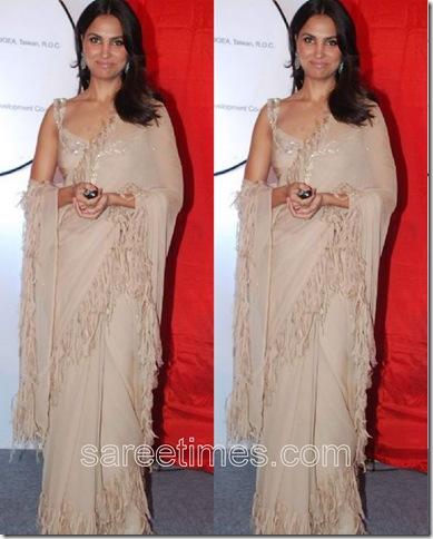 Lara-Dutta-Designer-Sari