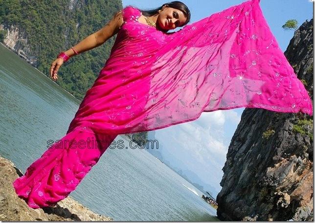 Navneent-Kaur-Pink-Designer-Saree
