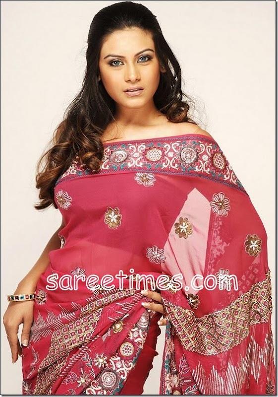 Bindhu chowdary-Sari