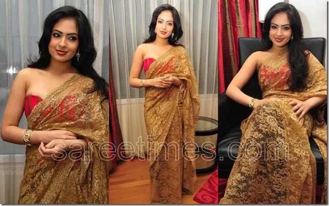 Nikesha-Patel-Lace-Sari
