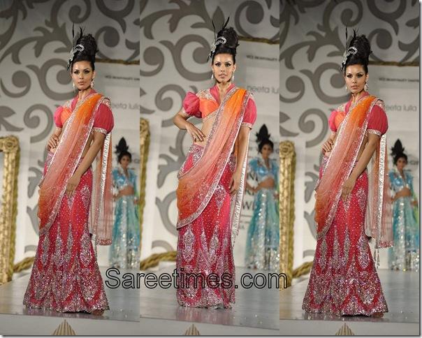 Neeta Lulla_Designer_Saree (7)
